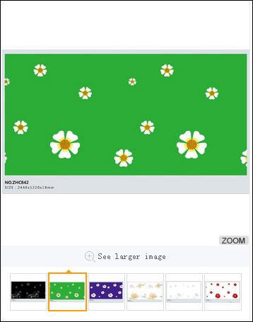 6-1 产品图片论坛例子.png